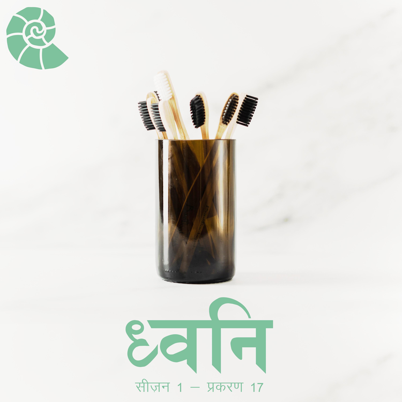 1.17 Socho – Sustainability kyun? [Hindi]